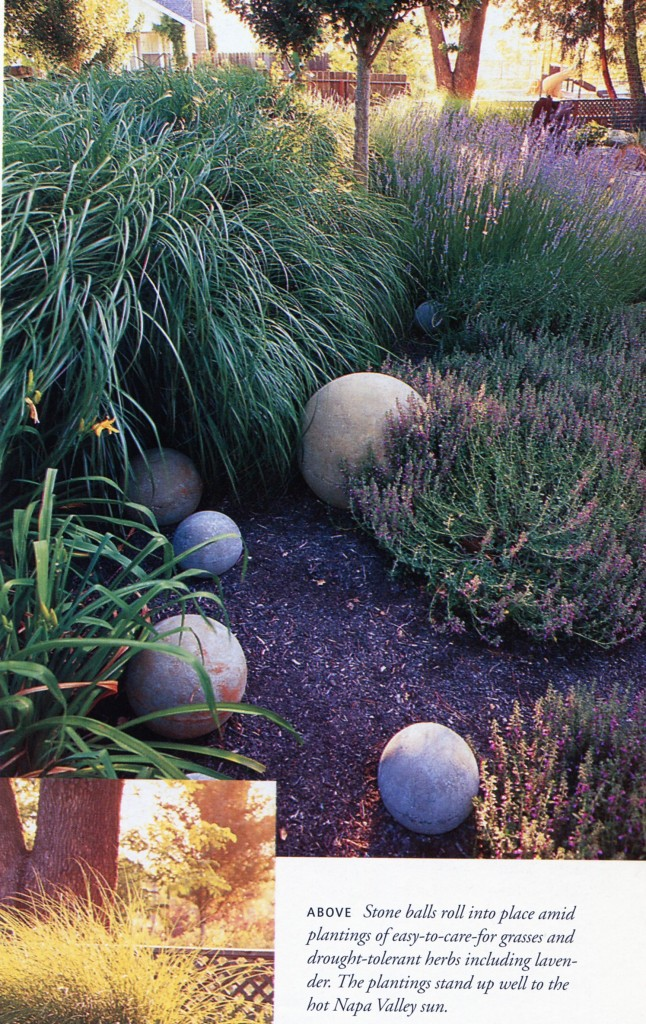 Example example of the kind of low maintenance landscaping Dave would like to see. Lavendar, day lillies, and grasses.
